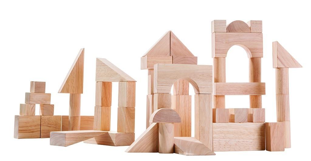Přírodní stavebnice (50 ks)