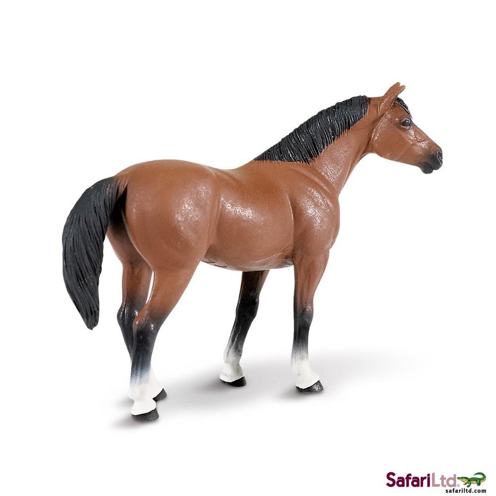 Americký kovbojský kůň