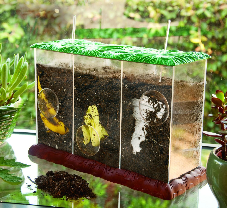 Pozorovací kompostér