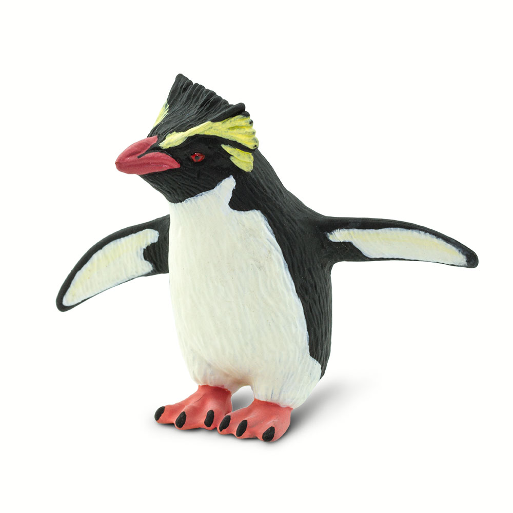 Tučňák skalní
