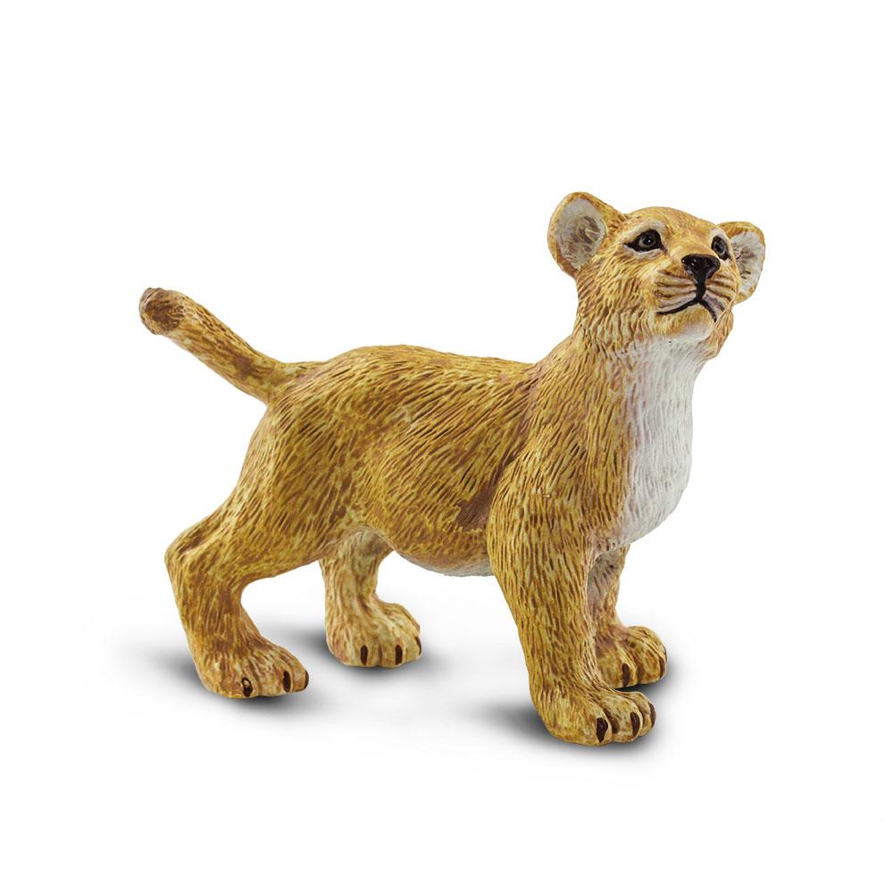 Mládě lva