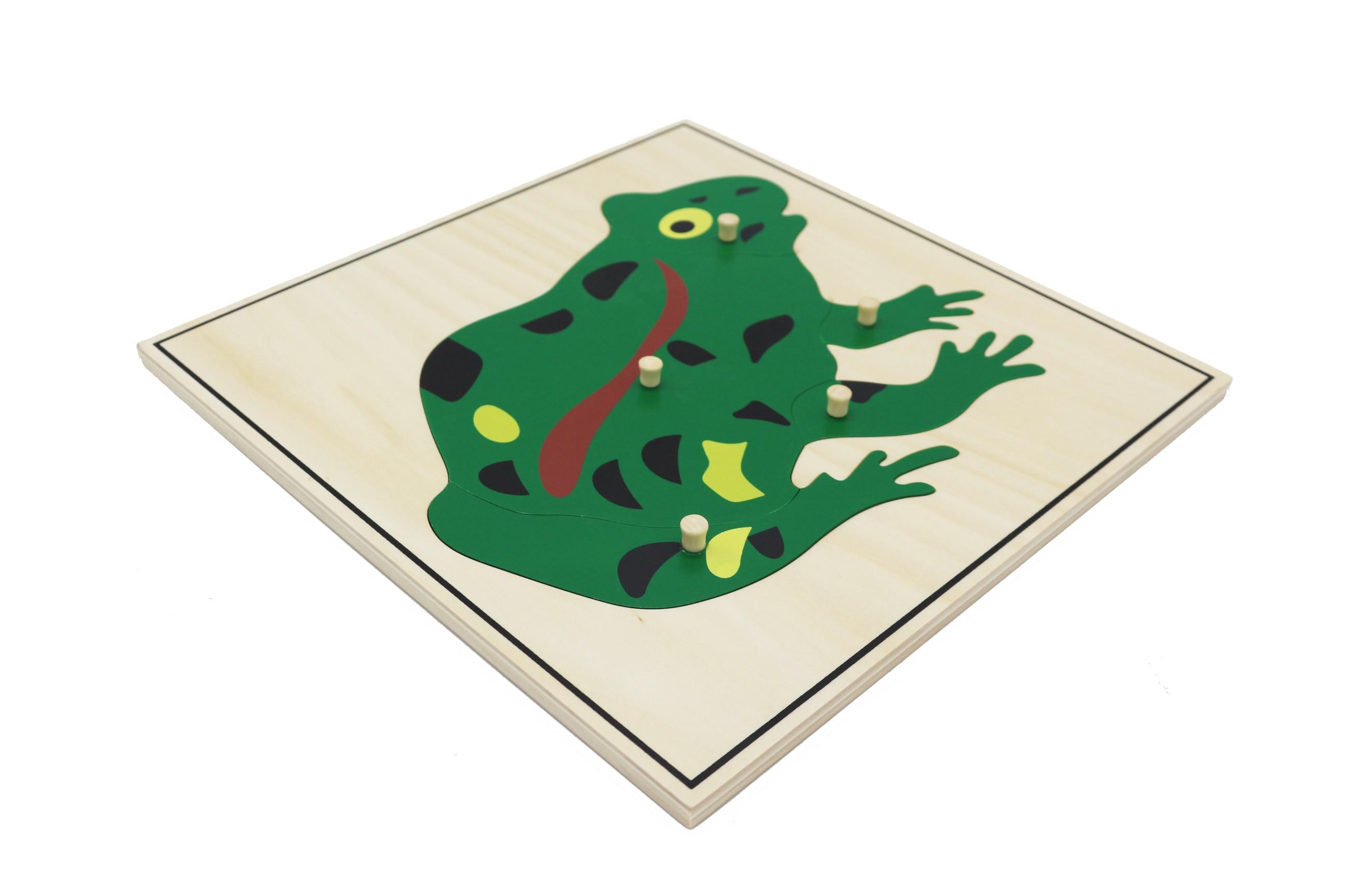 Puzzle - žába
